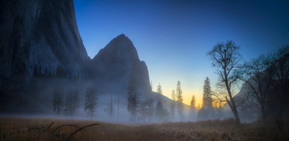 _20A5007-Edit_Yosemite arboles niebla.jp