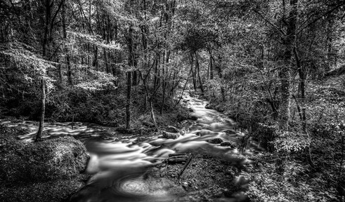 Rio Valle Slow ByN.jpg
