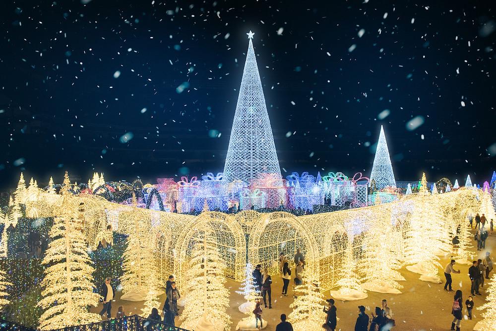 enchant christmas, christmas, magic