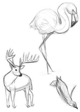 Animals Page 1