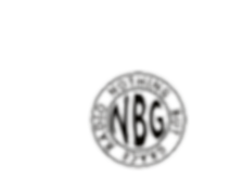 NBG Radio Logo 2018 WITH GLOW MORE.png