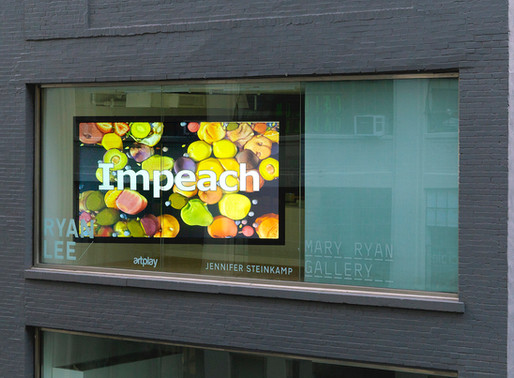 RLWindow: Jennifer Steinkamp, Impeach 1