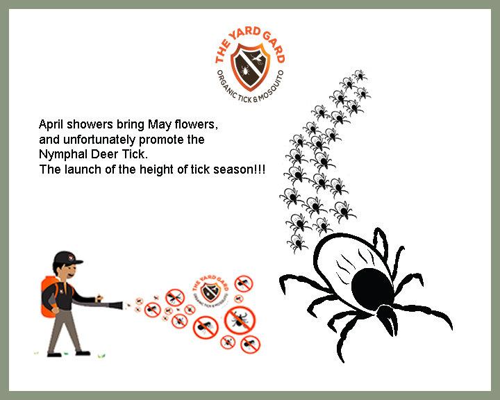 Deer Tick, bug control, keep kids safe from ticks, kill ticks, pet friendly control