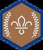chief-scouts-bronze-award-beavers-rgb-pn