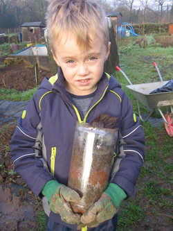 Working on the Allotment