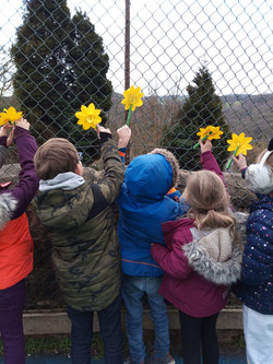 Class 2 Remembrance Daffodils