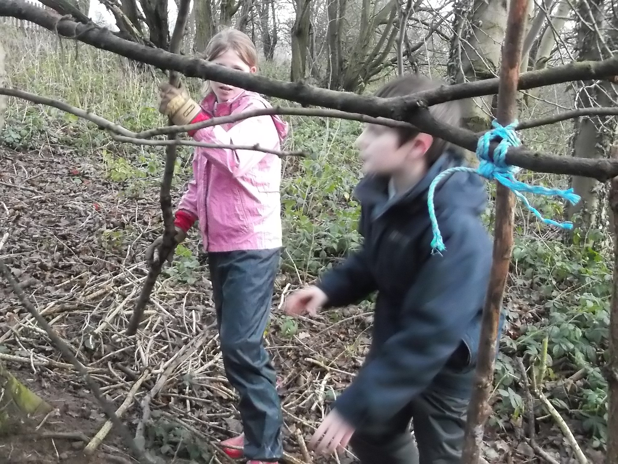 Making Forest Schools HQ