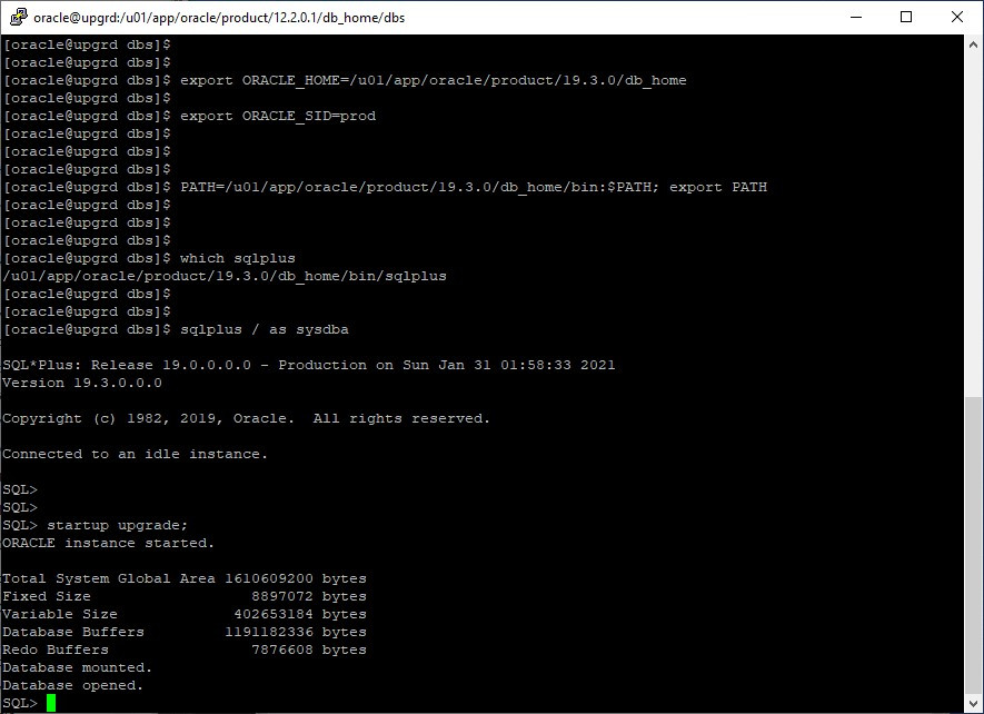 oracle 12c to 19c database upgrade - startup db in upgrade mode from 19c home