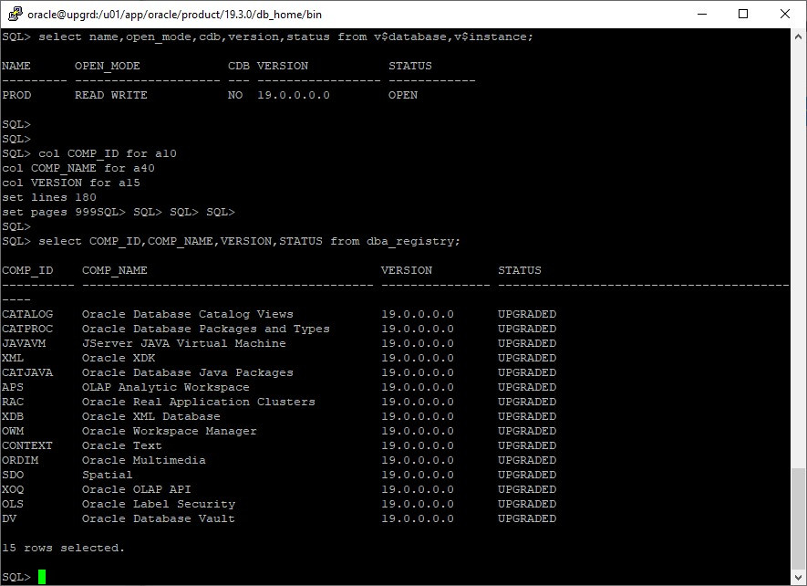 oracle 12c to 19c database upgrade - startup db 19c home