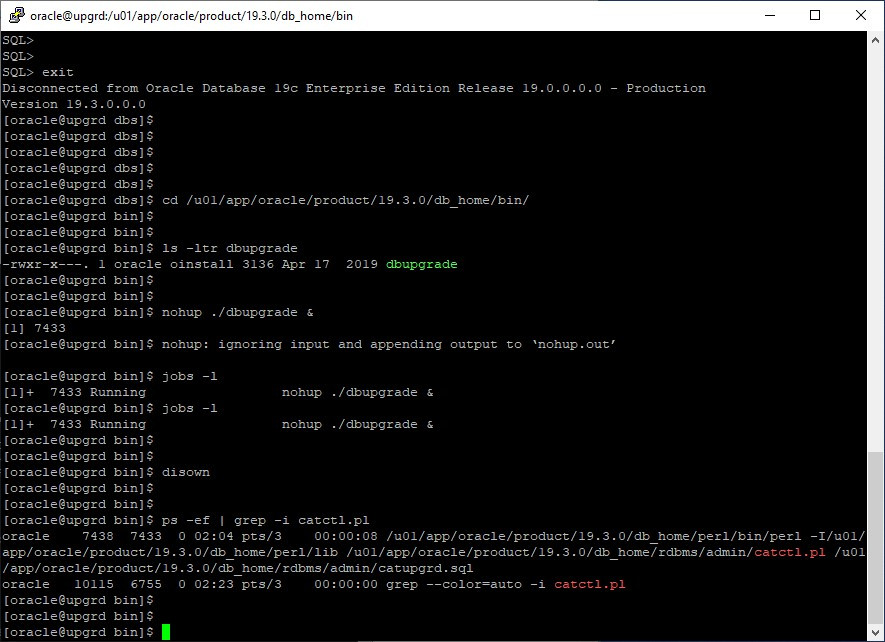 oracle 12c to 19c database upgrade - run dbupgrade