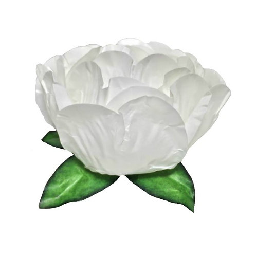 Bella White Paper Flower Shells