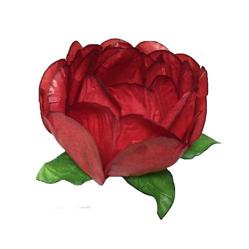 Bella Red Paper Flower Shells