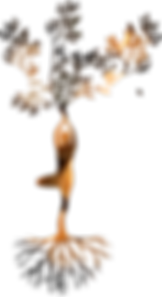 silhouette-3087517_1280_edited.png