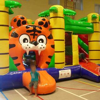 multy-play tijger.jpg
