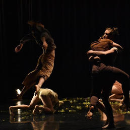 Choreography by Megan Moore Photo by Maia Durfee