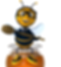 Bee Consulting Services