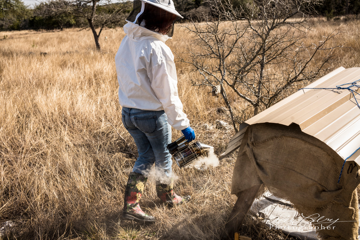 Beekeeping in the Hill Country