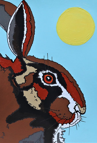 The Hare and the Sun