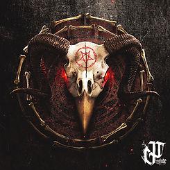 bird skull.jpg