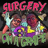 Surgery on a grape artwork.jpg