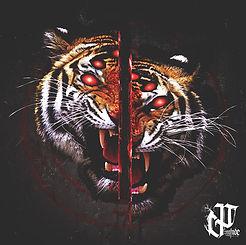 Split Tiger.jpg