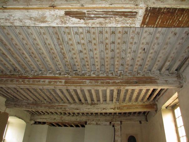 Plafonds à la française