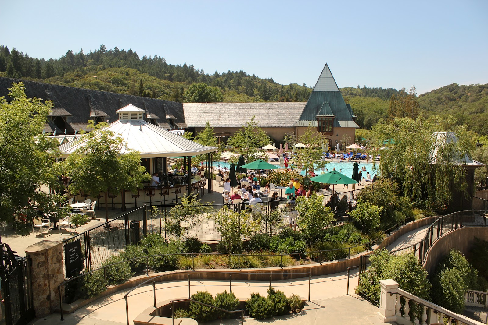 Coppola Winery Pool Cardinal Transportation Wine Tours