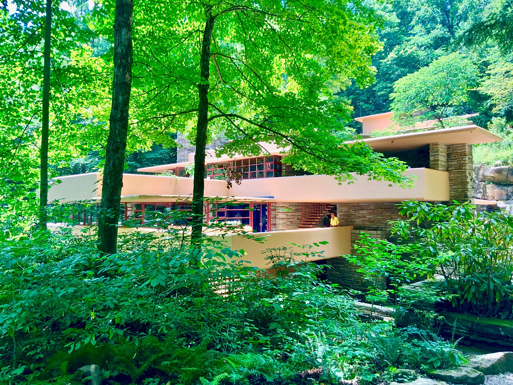 the first view of Fallingwater on your tour