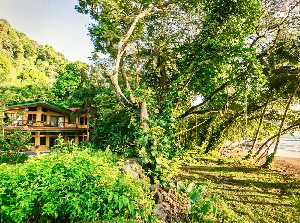 our house on Dominicalita Beach in the Ballena region of southern Costa Rica