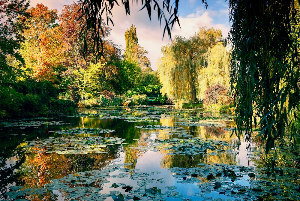 Monet's Water Garden in Giverny France