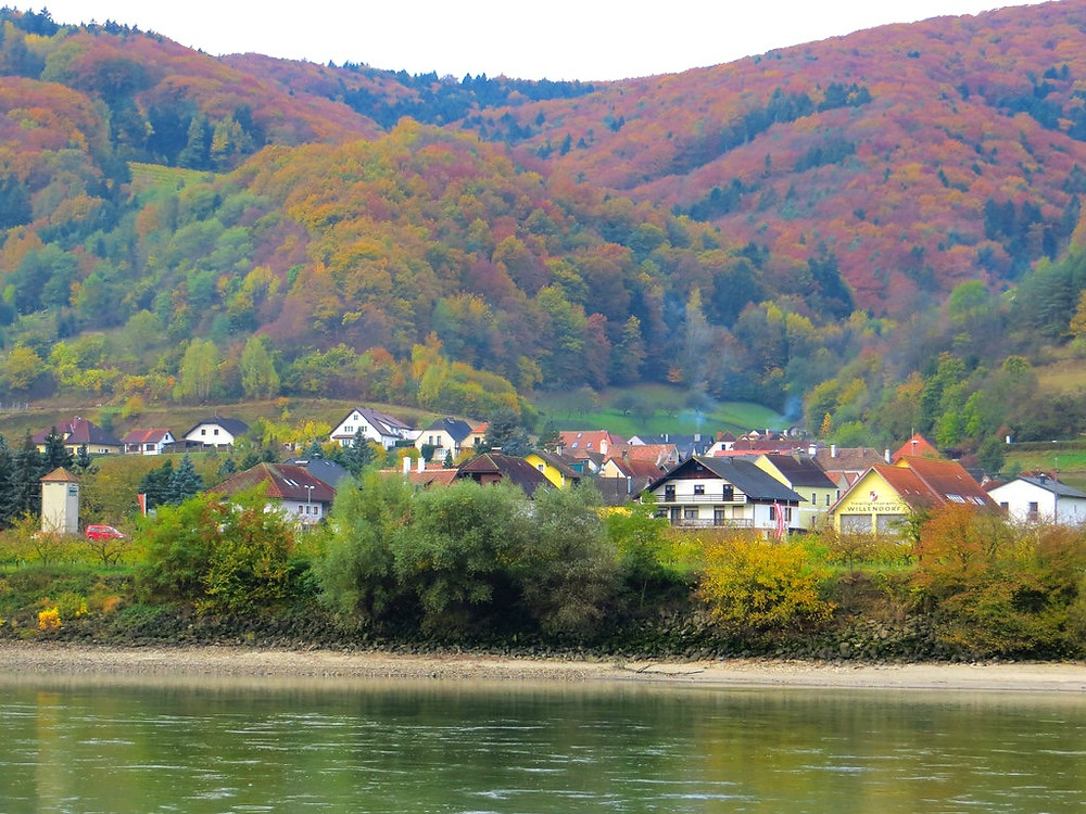 the tiny village of Willendorf on the Danube River