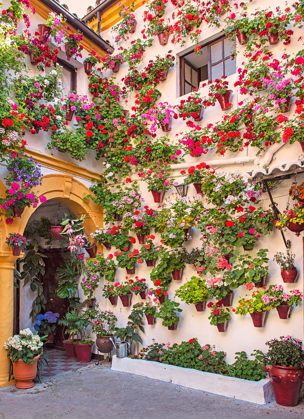 pretty patio in Cordoba