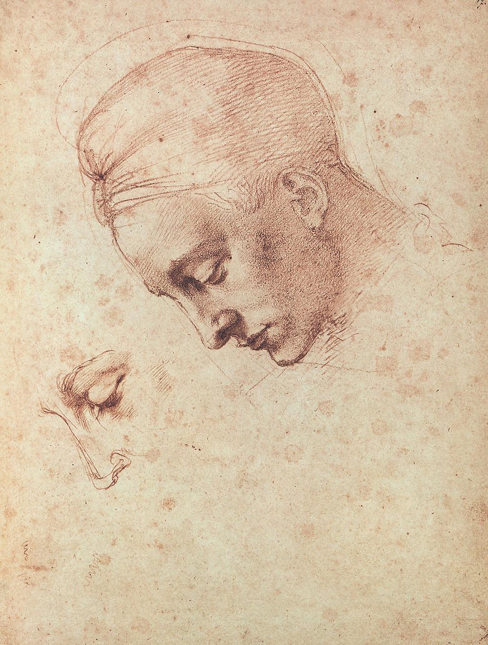 Study for the Head of Leda