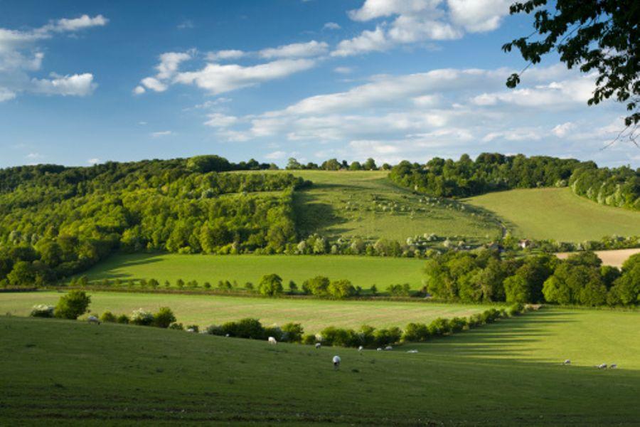 Turville England