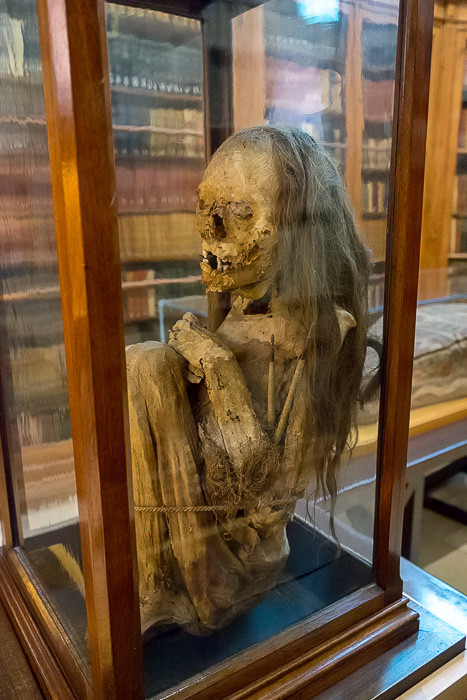 A Peruvian girl mummy complete with teeth and hair. I could never really ascertain why she was in the Carmo.