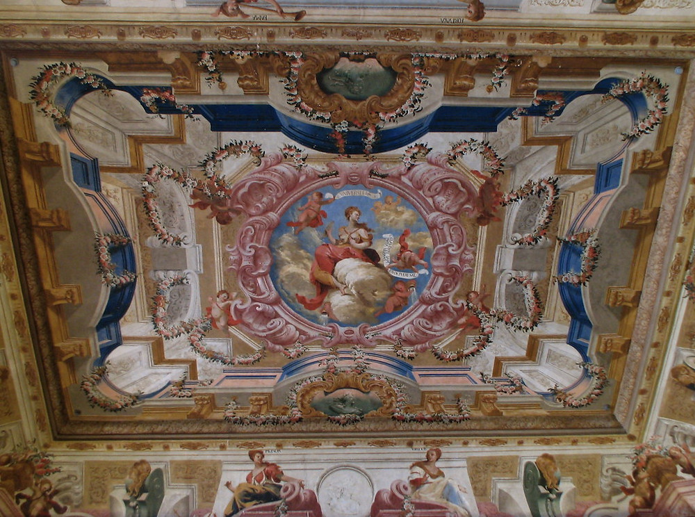 one of the magnificent ceilings in Joaninna Library