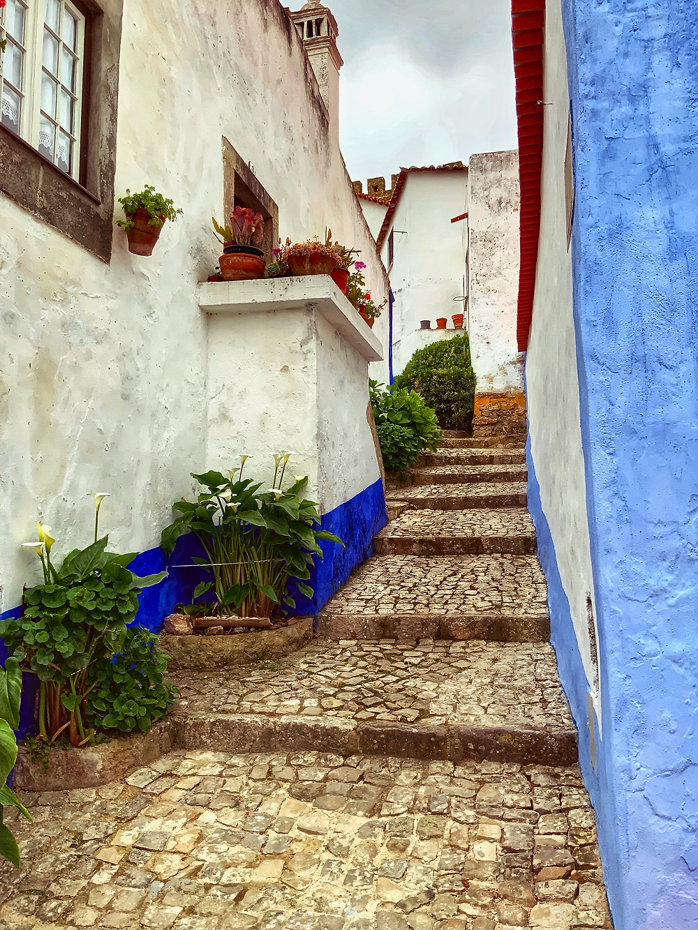 typical cobbled alleyway in Obidos