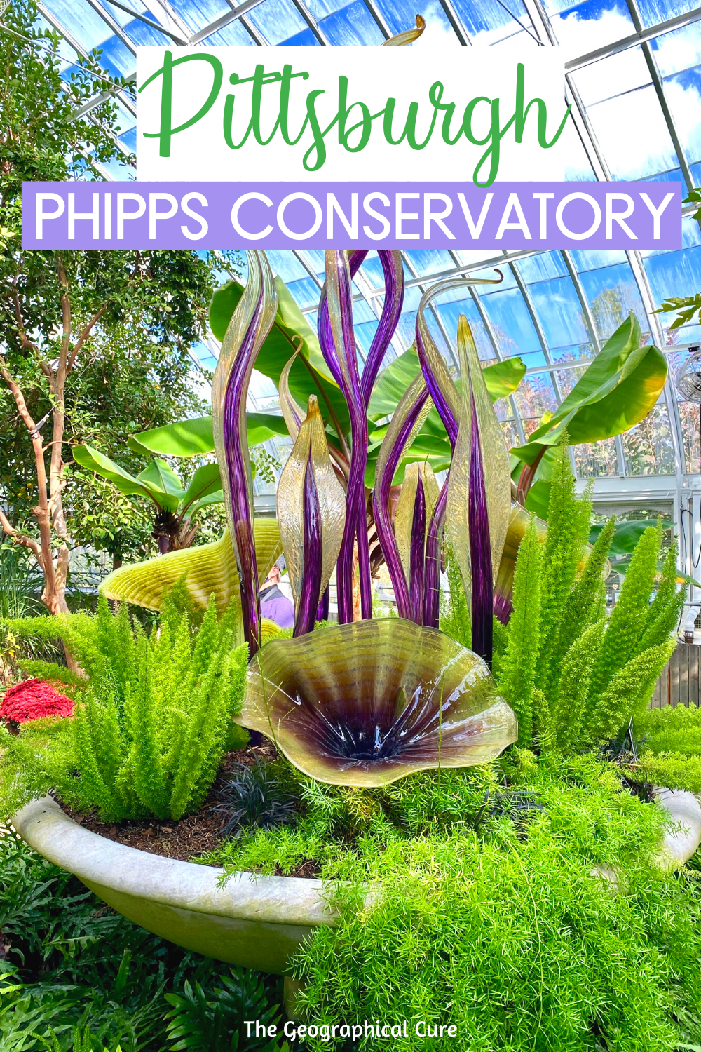 Guide to the Beautiful Phipps Conservatory in Pittsburgh PA