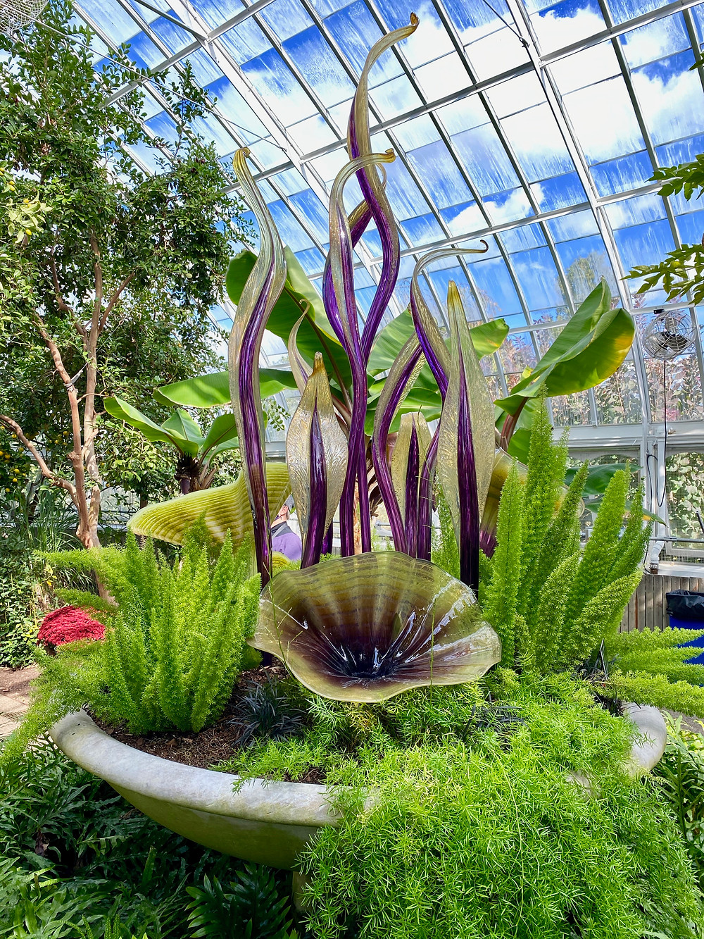 Dale Chihuly, Celadon and Gilded Royal Purple Fiori, 2007 -- in the Tropical Fruit and Spice Room
