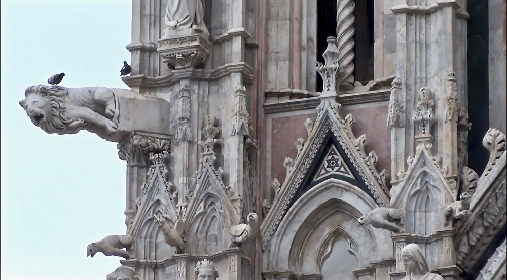 gargoyles and birds on Siena Cathedral