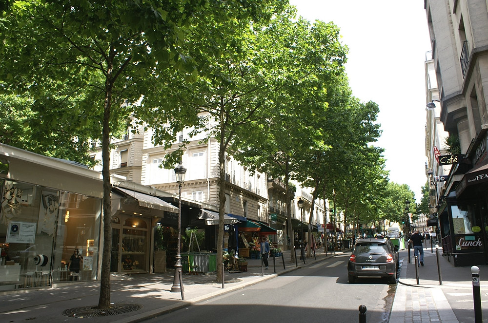Rue de Martyrs in South Pigalle