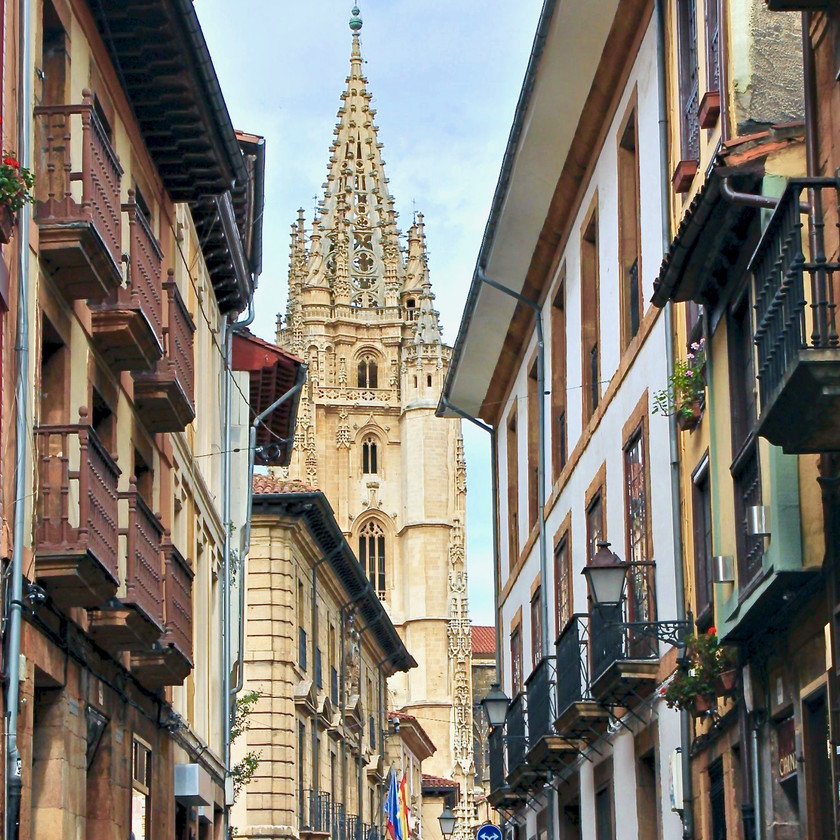 a view of Oviedo Cathedral