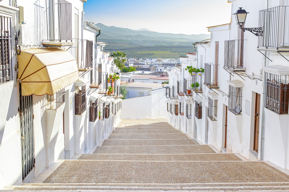 the elegant ducal town of Osuna in Andalusia
