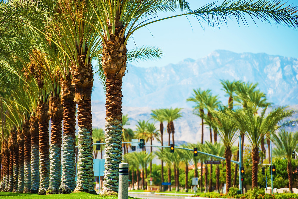 Palms Road in Coachella Valley