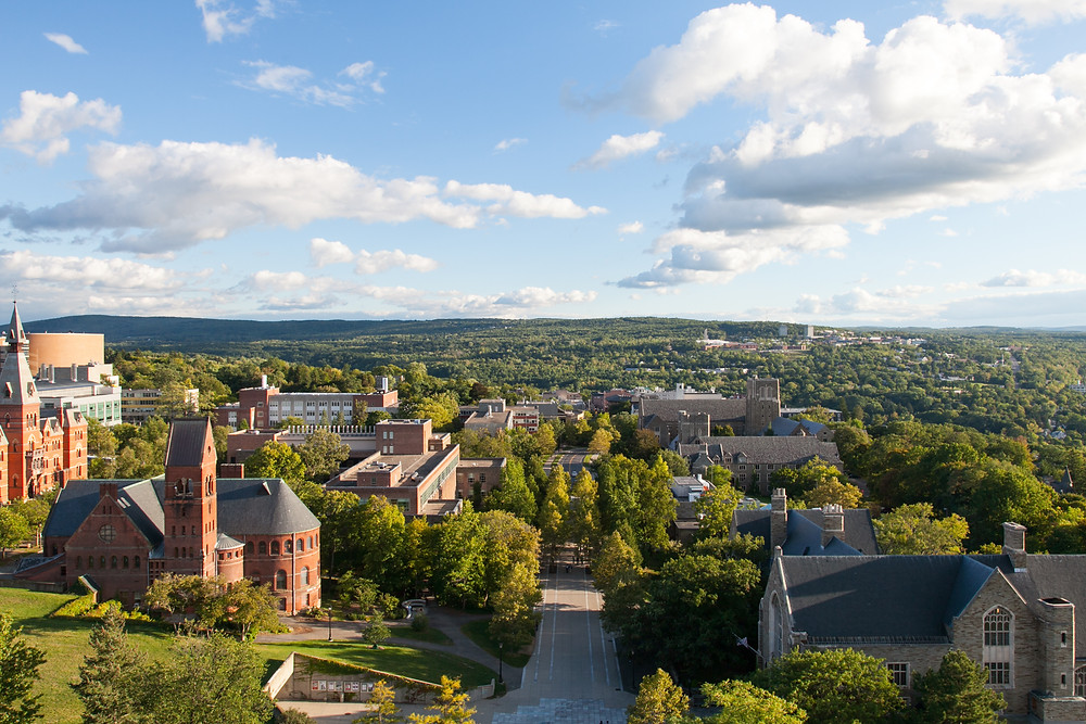 view of Cornell University's Uris Library in Ithaca New York