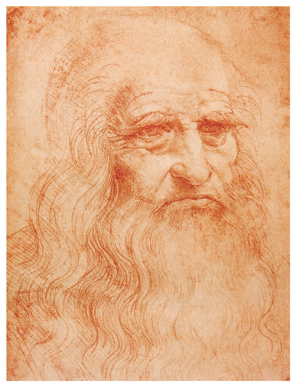 Leonardo da Vinci, Portrait of a Man in Red Chalk, 1512