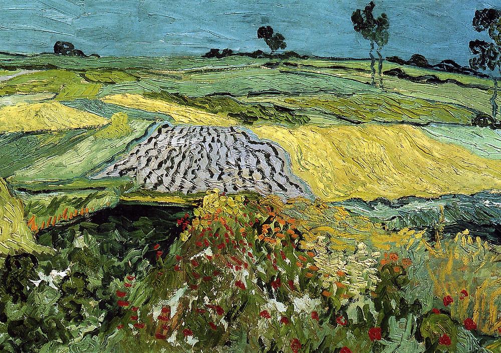Vincent Van Gogh, The Plains of Auvers, 1890