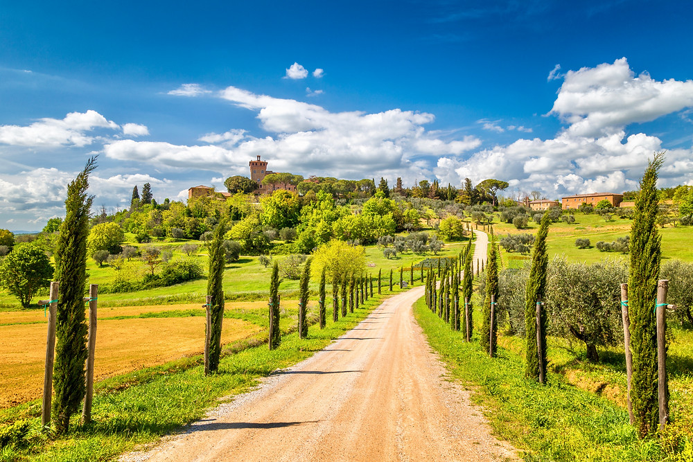 cypresses lined path to Palazzo Massaini, an architectural complex located on a hillside near Pienza