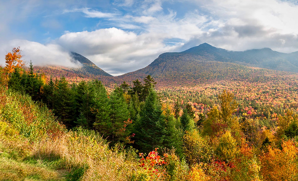 fall foliage in White Mountain National Forest in NH