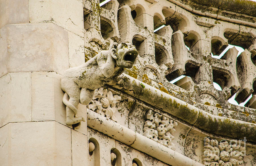 gargoyle on the face of Jeronimos Monastery in Lisbon
